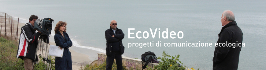EcoVideo